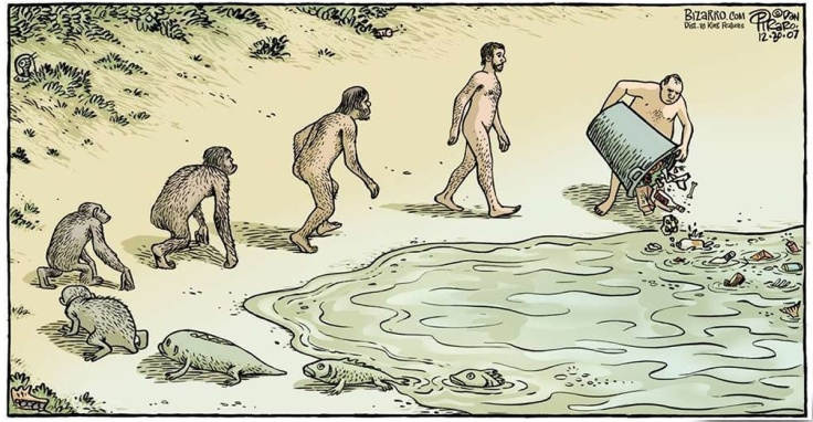 theory-of-evolution-funny