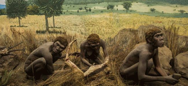 Hominins-odisha