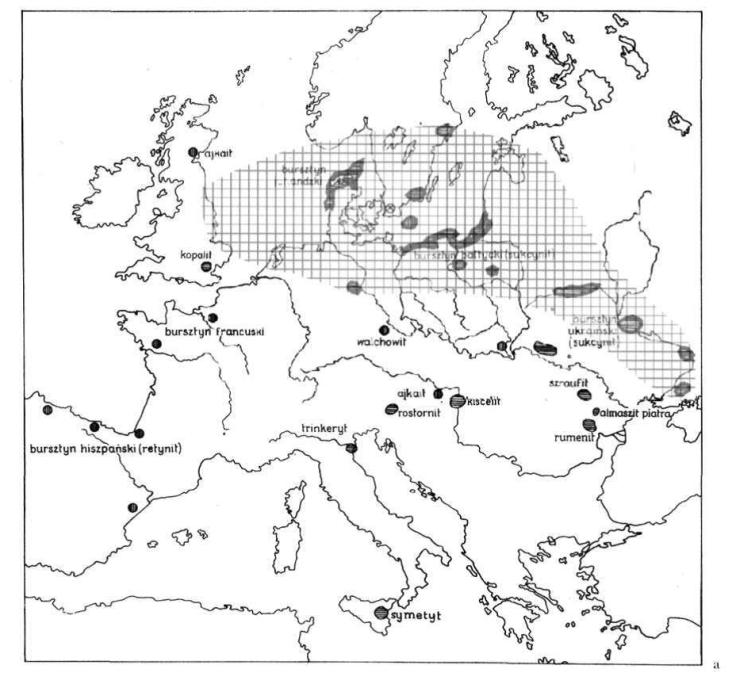 amber europe