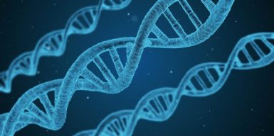 eight_col_Pixabay_dna-1811955_1920