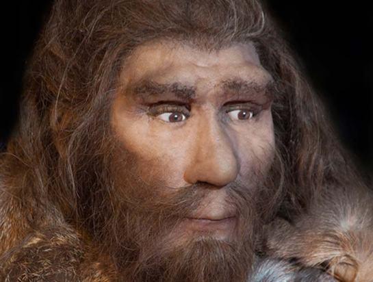 Neanderthal-tooth