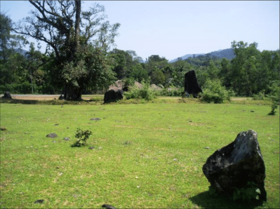 Some-of-the-menhirs-at-Nilaskal-Figure-6-The-orientation-of-menhirs-at-Nilaskal.png