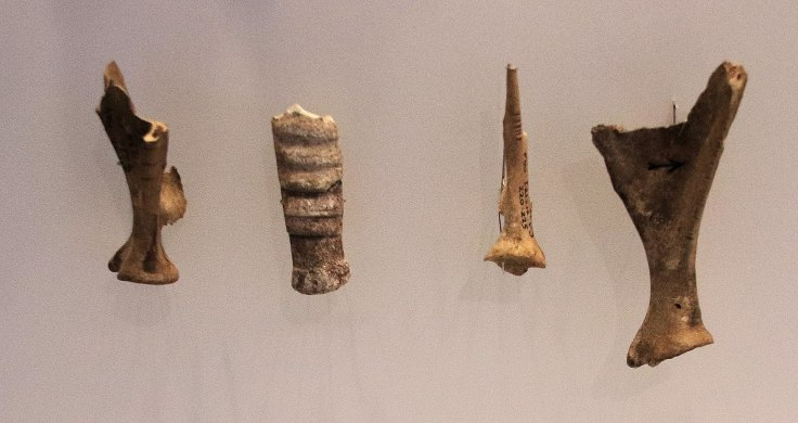 Aurignacian Culture incised animal bones, Hayonim Cave, 28,000 BP.